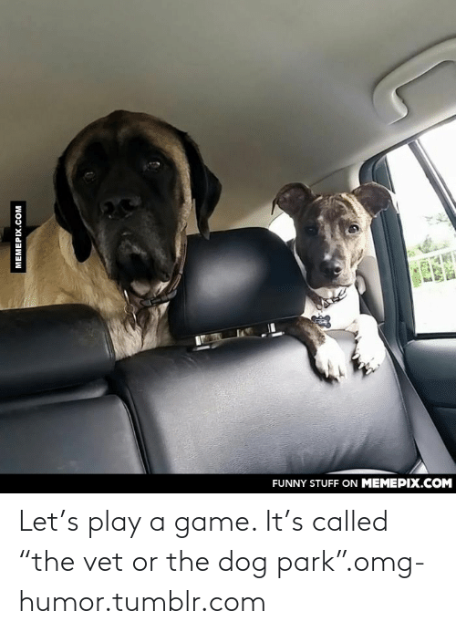 """Play A Game: FUNNY STUFF ON MEMEPIX.COM  MEMEPIX.COM  W02A Let's play a game. It's called """"the vet or the dog park"""".omg-humor.tumblr.com"""
