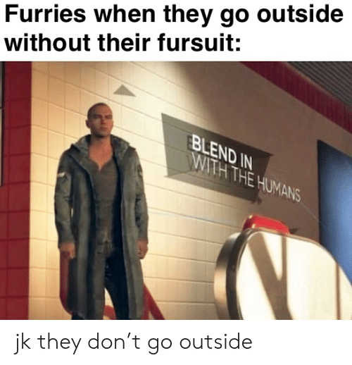 go outside: Furries when they go outside  without their fursuit:  FBLEND IN  WITH THE HUMANS jk they don't go outside