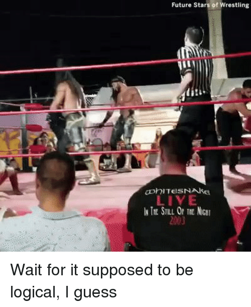 Funny, Future, and Wrestling: Future Stars of Wrestling  LIVE  2003 Wait for it supposed to be logical, I guess