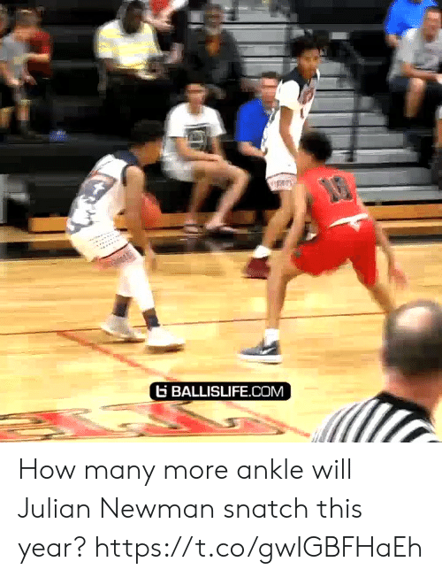 julian: G BALLISLIFE.COM How many more ankle will Julian Newman snatch this year? https://t.co/gwIGBFHaEh