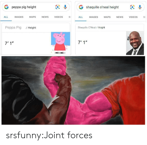 """Shaquille O'Neal: G shaquille o'neal height  G peppa pig height  IMAGES  ALL  IMAGES  MAPS  NEWS  VIDEOS  VIDEOS  ALL  MAPS  NEWS  S  Shaquille O'Neal/ Height  Peppa Pig  /Height  7' 1""""  7'1"""" srsfunny:Joint forces"""