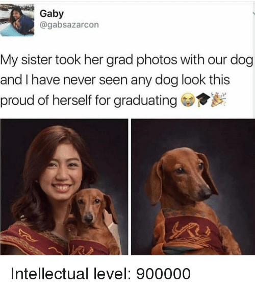 Gaby: Gaby  @gabsazarcon  My sister took her grad photos with our dog  and I have never seen any dog look this  proud of herself for graduating Intellectual level: 900000