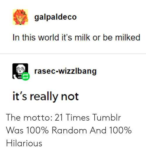 Tumblr, World, and Hilarious: galpaldeco  In this world it's milk or be milked  rasec-wizzlbang  it's really not The motto: 21 Times Tumblr Was 100% Random And 100% Hilarious