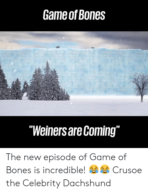 """Bones, Dank, and Game: Game of Bones  """"Weiners are Coming"""" The new episode of Game of Bones is incredible! 😂😂  Crusoe the Celebrity Dachshund"""