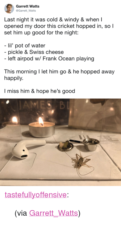 "Frank Ocean, Tumblr, and Twitter: Garrett Watts  Garrett Watts  Last night it was cold & windy & when I  opened my door this cricket hopped in, so l  set him up good for the night:  lil' pot of water  pickle & Swiss cheese  left airpod w/ Frank Ocean playing  This morning I let him go & he hopped away  happily.  I miss him & hope he's good <p><a href=""http://tumblr.tastefullyoffensive.com/post/168432124715/via-garrettwatts"" class=""tumblr_blog"">tastefullyoffensive</a>:</p>  <blockquote><p>(via <a href=""https://twitter.com/Garrett_Watts/status/939175299358457857"">Garrett_Watts</a>)</p></blockquote>"