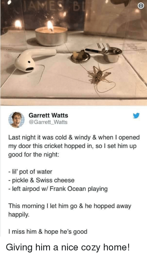 Frank Ocean, Cricket, and Good: Garrett Watts  @Garrett Watts  Last night it was cold & windy & when I opened  my door this cricket hopped in, so I set him up  good for the night:  - li pot of water  - pickle & Swiss cheese  - left airpod w/ Frank Ocean playing  This morning I let him go & he hopped away  happily.  I miss him & hope he's good Giving him a nice cozy home!