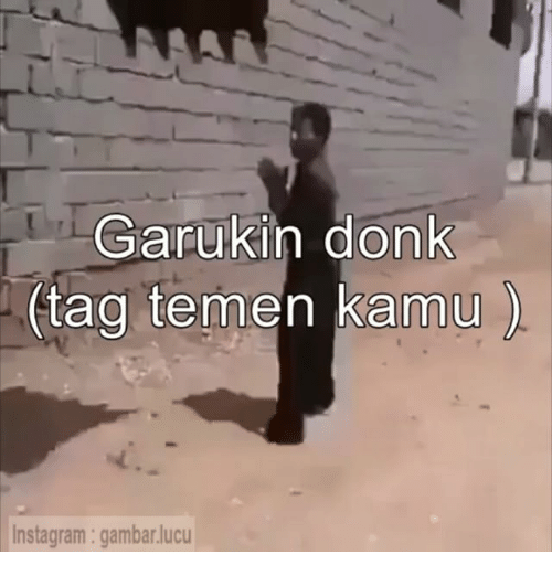 Indonesian (Language), Amu, and Donk: Garuk in donk  (tag tem  amu  Instagram: gambarlucu