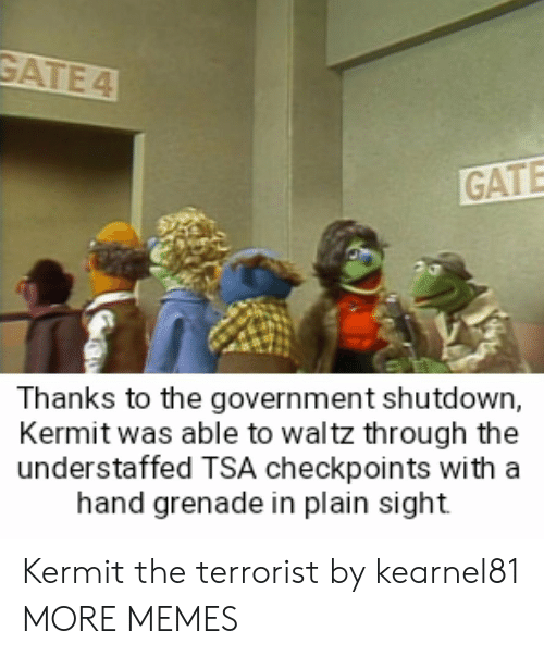 grenade: GATE  Thanks to the government shutdown,  Kermit was able to waltz through the  understaffed TSA checkpoints with a  hand grenade in plain sight Kermit the terrorist by kearnel81 MORE MEMES