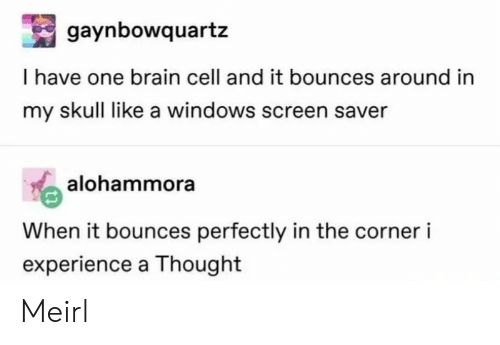 Windows, Brain, and Skull: gaynbowquartz  I have one brain cell and it bounces around in  my skull like a windows screen saver  alok  alohammora  When it bounces perfectly in the corner i  experience a Thought Meirl