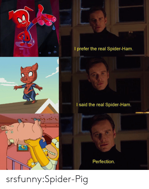 Spider, Tumblr, and Blog: Gd  I prefer the real Spider-Ham.  I said the real Spider-Ham.  Perfection. srsfunny:Spider-Pig