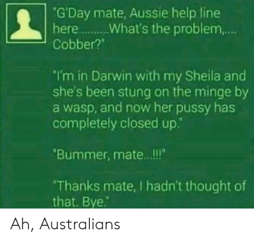 "bummer: ""G'Day mate, Aussie help line  Cobber?""  I'm in Darwin with my Sheila and  she's been stung on the minge by  a wasp, and now her pussy has  completely closed up.""  Bummer, mate.. .!!  Thanks mate, I hadn't thought of  that. Bye. Ah, Australians"