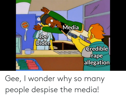 gee: Gee, I wonder why so many people despise the media!