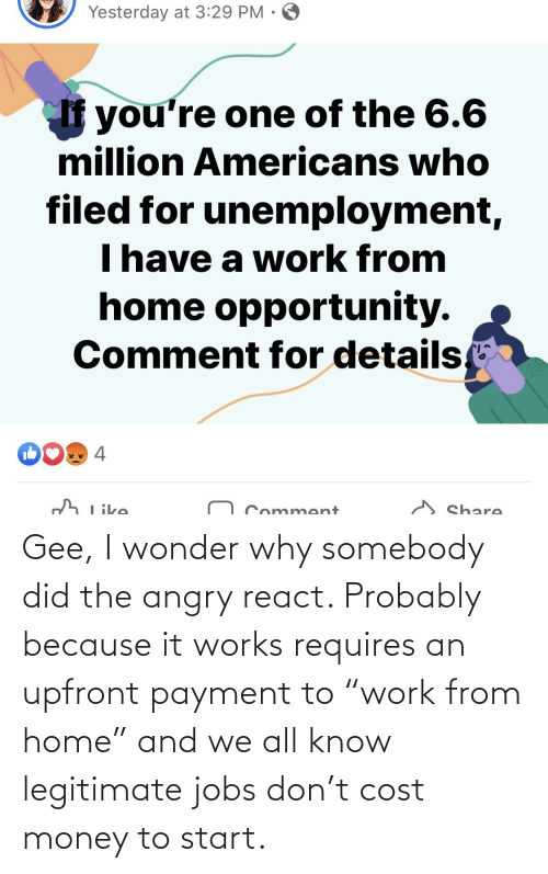 """gee: Gee, I wonder why somebody did the angry react. Probably because it works requires an upfront payment to """"work from home"""" and we all know legitimate jobs don't cost money to start."""