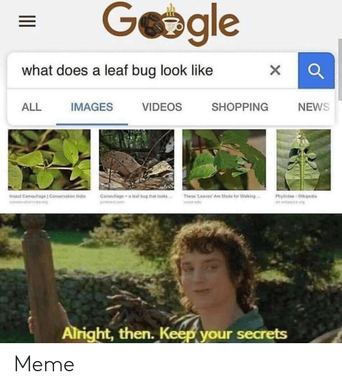 Leal: Geegle  what does a leaf bug look like  X  IMAGES  SHOPPING  ALL  VIDEOS  NEWS  Cameufage-a leal bug that looks  These Leaves Are Made for Walking  Iet Camauliage  Conservation Inda  Phyde-Wikipedia  w.  Alright, then. Keep your secrets Meme