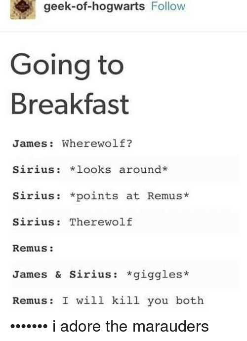 I Will Kill You: geek-of-hogwarts Follow  Going to  Breakfast  James: Wherewolf?  Sirius: looks around*  Sirius: *points at Remus*  Sirius: Therewolf  Remus:  James & Sirius: *giggles*  Remus: I will kill you both ••••••• i adore the marauders
