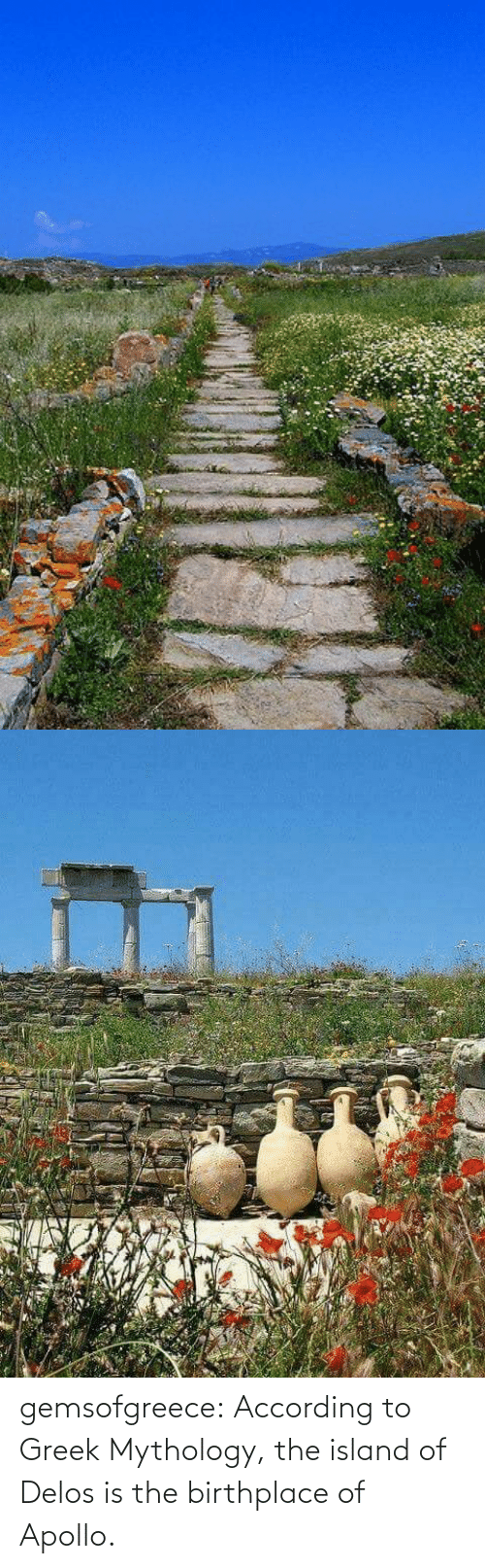 Greek: gemsofgreece: According to Greek Mythology, the island of Delos is the birthplace of Apollo.