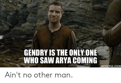 Dank, Saw, and Only One: GENDRY IS THE ONLY ONE  WHO SAW ARYA COMING  MEMEFUL.COM Ain't no other man.