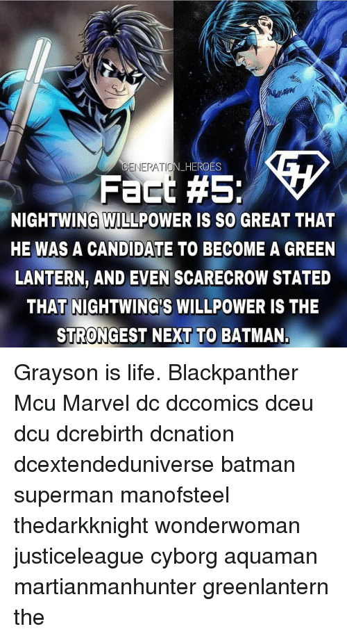 lantern: GENERATIO  N HERO  ES  Fact #5:  NIGHTWING WILLPOWER IS SO GREAT THAT  HE WAS A CANDIDATE TO BECOME A GREEN  LANTERN, AND EVEN SCARECROW STATED  THAT NIGHTWING'S WILLPOWER IS THE  STRONGEST NEXT TO BATMAN Grayson is life. Blackpanther Mcu Marvel dc dccomics dceu dcu dcrebirth dcnation dcextendeduniverse batman superman manofsteel thedarkknight wonderwoman justiceleague cyborg aquaman martianmanhunter greenlantern the