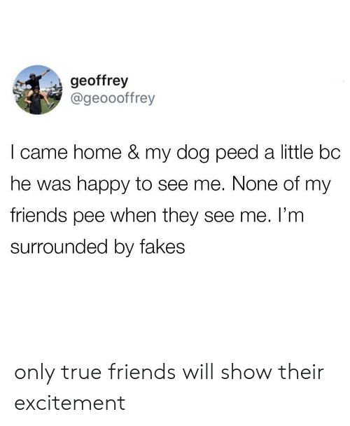 excitement: geoffrey  @geoooffrey  I came home & my dog peed a little bc  he was happy to see me. None of my  friends pee when they see me. I'm  surrounded by fakes only true friends will show their excitement