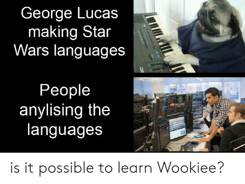 Star Wars, Star, and George Lucas: George Lucas  making Star  Wars languages  People  anylising the  languages  aner is it possible to learn Wookiee?