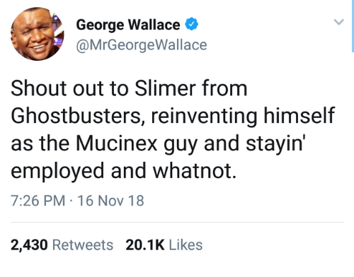 Ghostbusters: George Wallace  @MrGeorgeWallace  Shout out to Slimer from  Ghostbusters, reinventing himself  as the Mucinex guy and stayirn  employed and whatnot.  7:26 PM 16 Nov 18  2,430 Retweets 20.1K Like:s