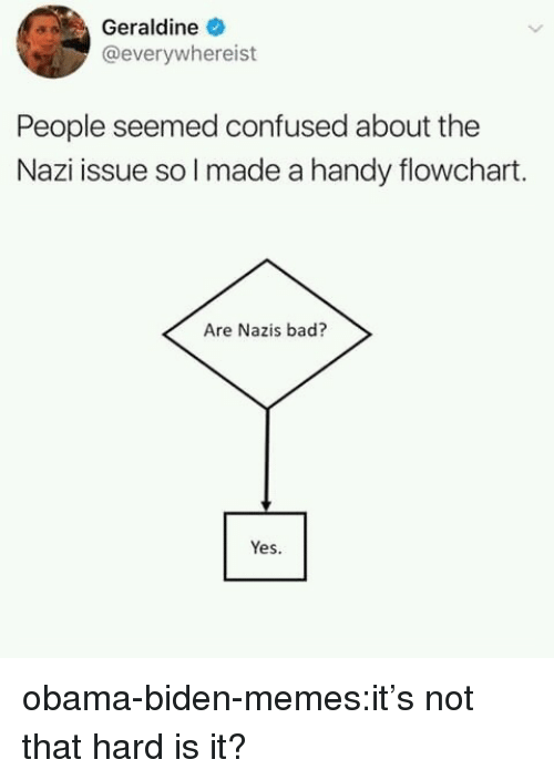 Bad, Confused, and Memes: Geraldine  @everywhereist  People seemed confused about the  Nazi issue so l made a handy flowchart.  Are Nazis bad?  Yes. obama-biden-memes:it's not that hard is it?