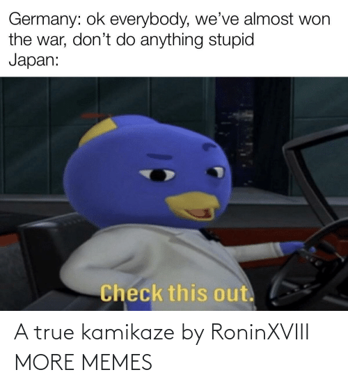 Germany: Germany: ok everybody, we've almost won  the war, don't do anything stupid  Japan:  Check this out. A true kamikaze by RoninXVIII MORE MEMES