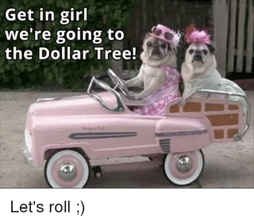 lets roll: Get in girl  we're going to  the Dollar Tree! Let's roll ;)