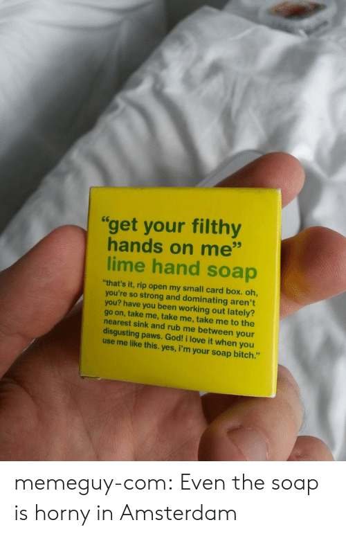 "Dominating: ""get your filthy  hands on me""  lime hand soap  ""that's it, rip open my small card box. oh,  you're so strong and dominating aren't  you? have you been working out lately?  go on, take me, take me, take me to the  nearest sink and rub me between your  disgusting paws. God! i love it when you  use me like this. yes, i'm your soap bitch."" memeguy-com:  Even the soap is horny in Amsterdam"