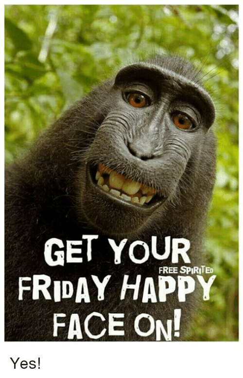 Friday, Memes, and Free: GET YOUR  FREE SPIRITED  FRIDAY HAPPY  FACE ON! Yes!