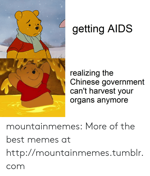 aids: getting AIDS  realizing the  Chinese government  can't harvest your  organs anymore mountainmemes:  More of the best memes at http://mountainmemes.tumblr.com