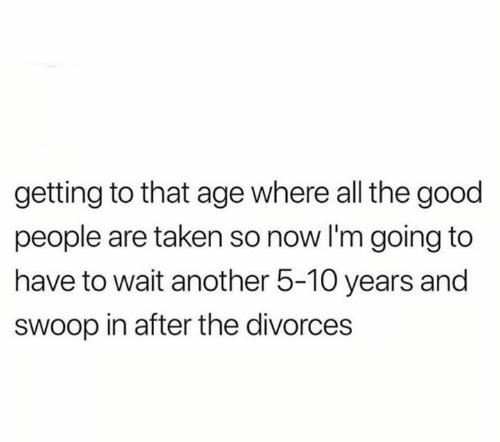 Memes, Taken, and Good: getting to that age where all the good  people are taken so now I'm going to  have to wait another 5-10 years and  sWoop in after the divorces
