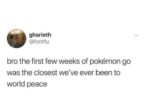 Dank, Pokemon, and World: gharieth  @hmtfu  bro the first few weeks of pokémon go  the closest we've ever been to  world peace