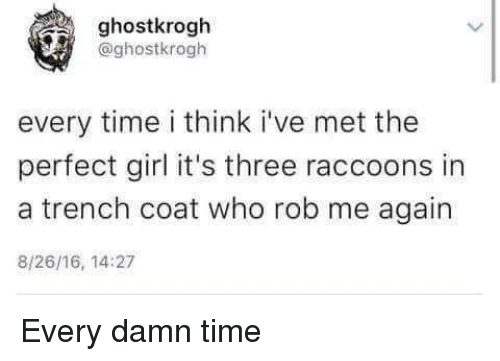 perfect girl: ghostkrogh  @ghostkrogh  every time i think i've met the  perfect girl it's three raccoons in  a trench coat who rob me again  8/26/16, 14:27 Every damn time