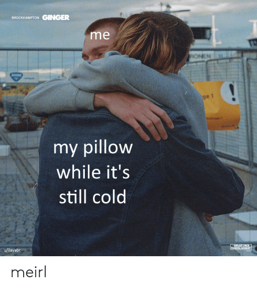 ginger: GINGER  BROCKHAMPTON  me  ONEN  ge 1  my pillow  while it's  still cold  u/ilayabr  PARENTAL ADV8O meirl