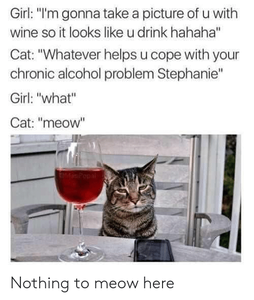 "take a picture: Girl: ""l'm gonna take a picture of u with  wine so it looks like u drink hahaha""  Cat: ""Whatever helps u cope with your  chronic alcohol problem Stephanie""  Girl: ""what""  Cat: ""meow"" Nothing to meow here"
