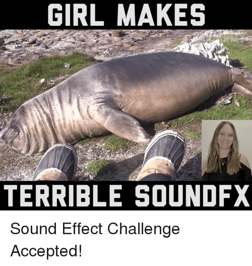 Terribler: GIRL MAKES  TERRIBLE SOUNDFX Sound Effect Challenge Accepted!