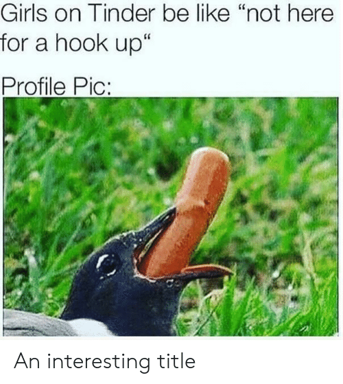 """Girls On Tinder: Girls on Tinder be like """"not here  for a hook up""""  Profile Pic:  CS An interesting title"""