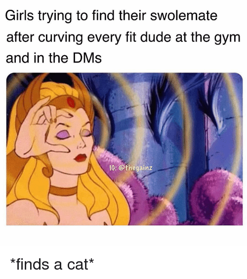 Dude, Girls, and Gym: Girls trying to find their swolemate  after curving every fit dude at the gym  and in the DMs  IG: @thegainz *finds a cat*