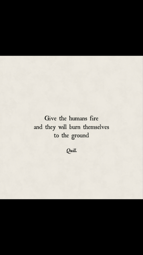 to-the-ground: Give the humans fire  and they will burn themselves  to the ground  Quill.