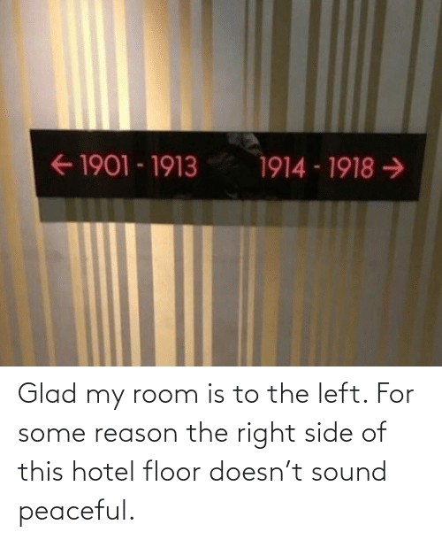 Reason: Glad my room is to the left. For some reason the right side of this hotel floor doesn't sound peaceful.