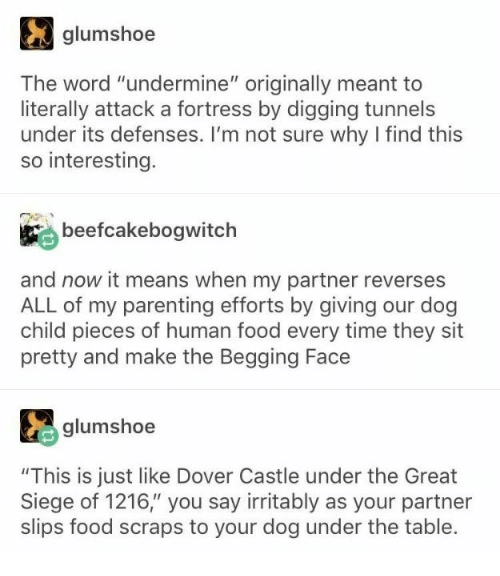 """Defenses: glumshoe  The word """"undermine"""" originally meant to  literally attack a fortress by digging tunnels  under its defenses. I'm not sure why I find this  so interesting.  beefcakebogwitch  and now it means when my partner reverses  ALL of my parenting efforts by giving our dog  child pieces of human food every time they sit  pretty and make the Begging Face  glumshoe  """"This is just like Dover Castle under the Great  Siege of 1216,"""" you say irritably as your partner  slips food scraps to your dog under the table."""