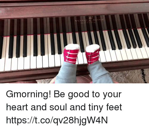 Memes, Good, and Heart: Gmorning!  Be good to your heart and soul and tiny feet https://t.co/qv28hjgW4N
