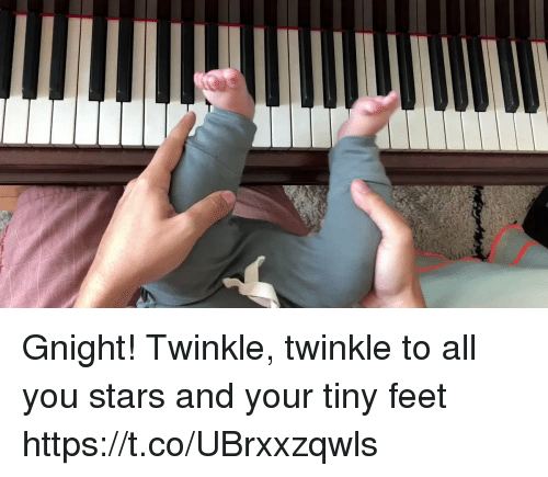 Memes, Stars, and 🤖: Gnight! Twinkle, twinkle to all you stars and your tiny feet https://t.co/UBrxxzqwls