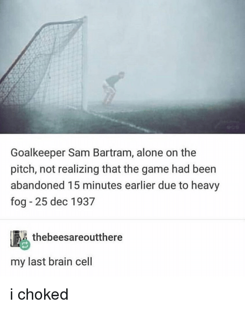 Being Alone, Memes, and The Game: Goalkeeper Sam Bartram, alone on the  pitch, not realizing that the game had been  abandoned 15 minutes earlier due to heavy  fog 25 dec 1937  thebeesareoutthere  my last brain cell i choked