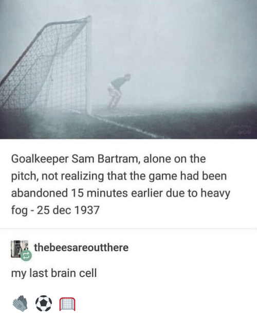 Being Alone, The Game, and Tumblr: Goalkeeper Sam Bartram, alone on the  pitch, not realizing that the game had been  abandoned 15 minutes earlier due to heavy  fog - 25 dec 1937  thebeesareoutthere  my last brain cell