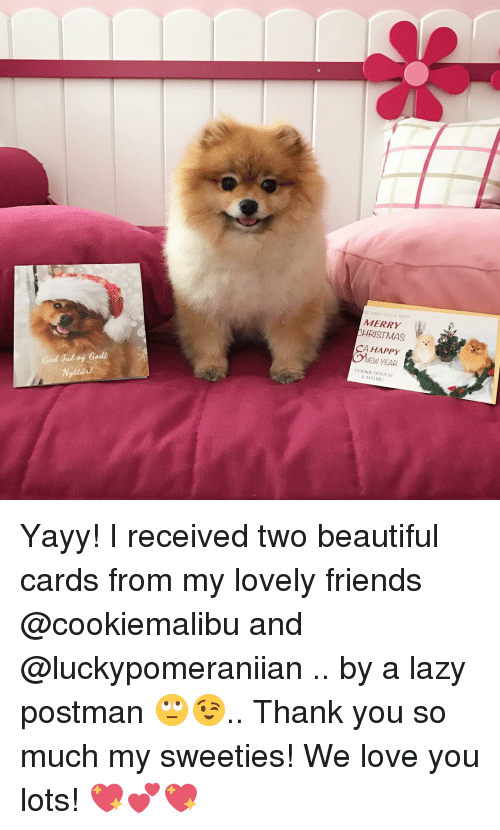 malibu: God Jul og Godt  WE WASH YOU A VERY  MERRY  RISTMAS  CA HAPPY  NEW YEAR  COOKIE DOUGH  & MALIBU Yayy! I received two beautiful cards from my lovely friends @cookiemalibu and @luckypomeraniian .. by a lazy postman 🙄😉.. Thank you so much my sweeties! We love you lots! 💖💕💖