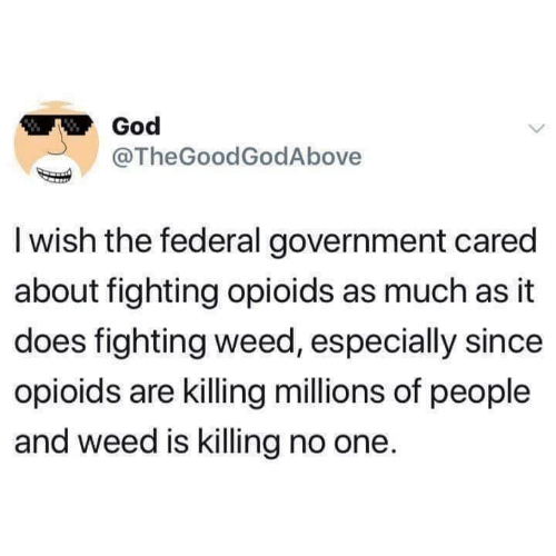 God, Memes, and Weed: God  @TheGoodGodAbove  I wish the federal government cared  about fighting opioids as much as it  does fighting weed, especially since  opioids are killing millions of people  and weed is killing no one.