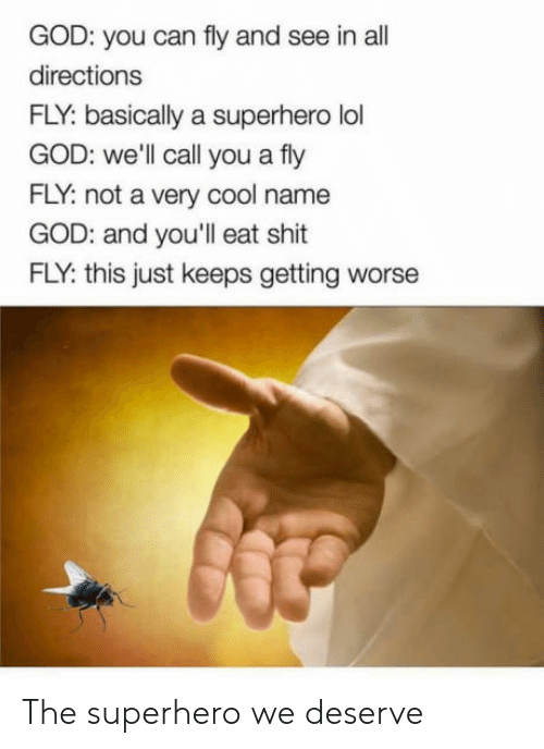 God, Lol, and Shit: GOD: you can fly and see in all  directions  FLY: basically a superhero lol  GOD: well call you a fly  FLY: not a very cool name  GOD: and you'll eat shit  FLY: this just keeps getting worse The superhero we deserve