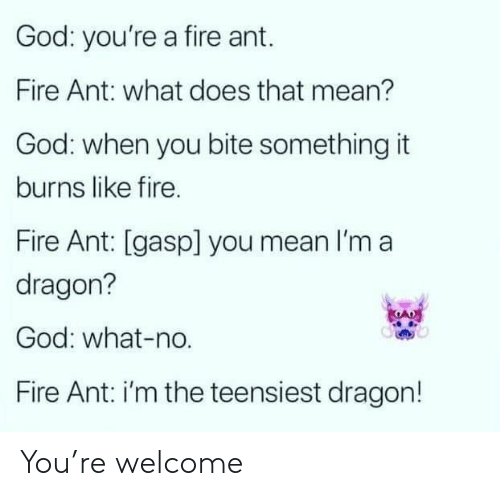 Fire, God, and Mean: God: you're a fire ant.  Fire Ant: what does that mean?  God: when you bite something it  burns like fire.  Fire Ant: [gasp] you mean I'm a  dragon?  God: what-no.  Fire Ant: i'm the teensiest dragon! You're welcome